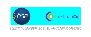 LINK DE PAGOS PAGINA WEB MEDIDA 2